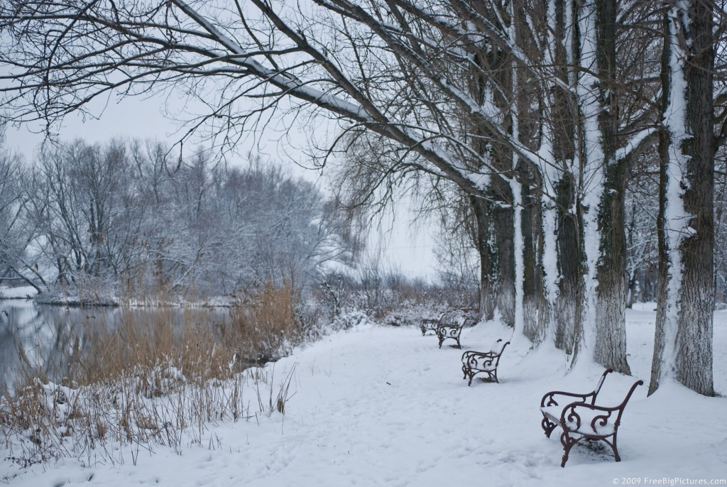 winter-scene (1)