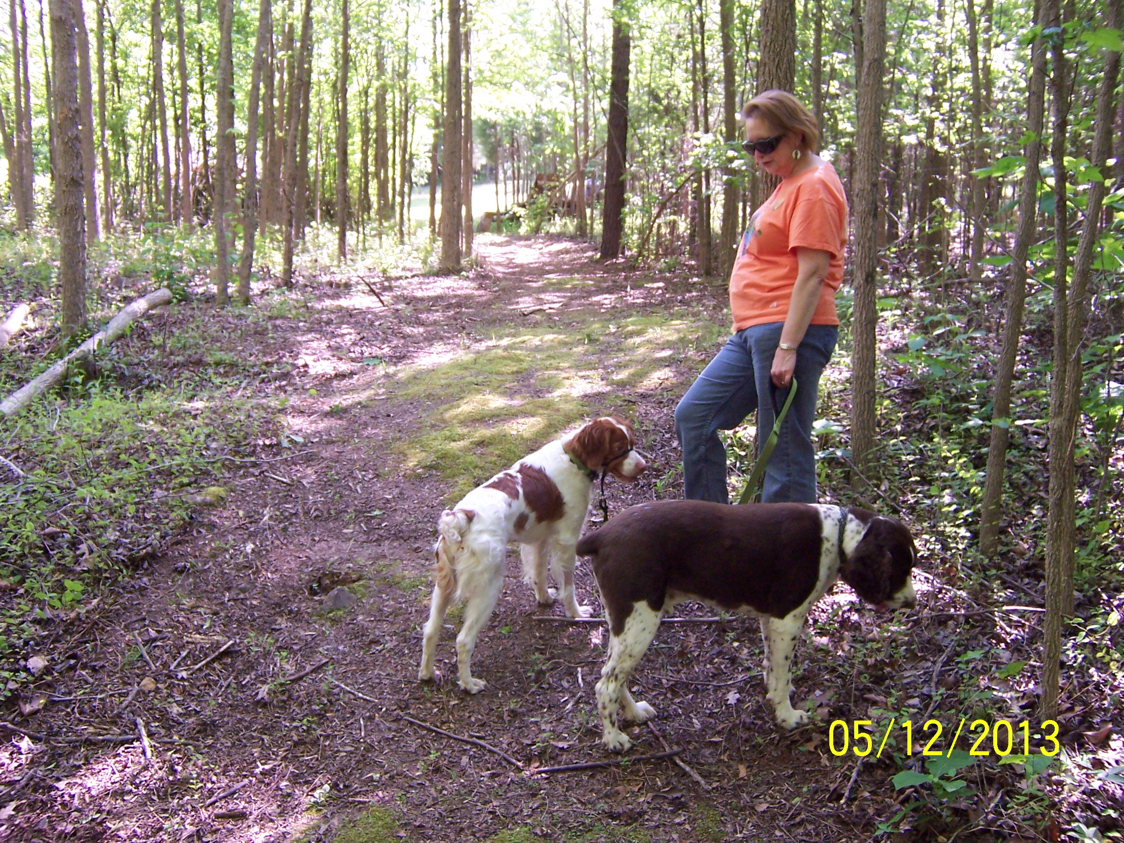 Lake norman archives dog walkers more at coddle creek llc love your pet solutioingenieria Choice Image