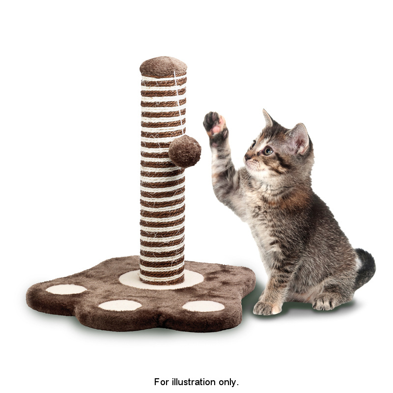 how to make cat use scratching post