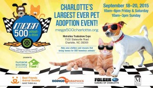 Mega adoption event